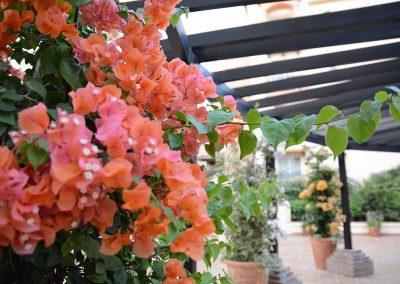Flores - entrada apartamentos
